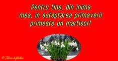 Pentru tine, din inima mea, în așteptarea primăverii primește un mărțișor!