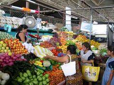 what my organic market looks like  Mercado ecológico
