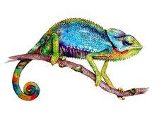 CHAMELEON Watercolor Art Print , Watercolor Painting, Print Colorful Chameleon