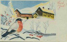 Julekort Milly Heegaard. Dompap på kvist. Utg Mittet Stemplet 1942