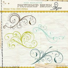 Photoshop brush baroque swirl Photoshop Lessons, Photoshop Help, Photoshop Brushes, Graphic Design Fonts, Typography Design, Stencil Patterns, Free Motion Quilting, Photoshop Elements, Photo Manipulation
