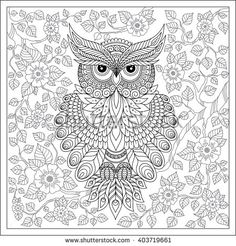 Exotic bird,fantastic flowers,branches, leaves. Coloring page with cute owl and floral frame. Coloring book page for adults and children. Black White Bird collection. Set of illustration.