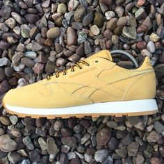 bbd31e4757 Reebok Classic Leather Wheat! Brand new with box! Amazing shoe,'restocked  having. Depop