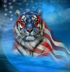 Buy American Tiger - Animals Paint By Number kit or check our new modern collections for adults paint by numbers. Relax and enjoy your canvas painting Pet Tiger, Tiger Art, Tiger Cubs, Bear Cubs, Bengal Tiger, Flag Art, Thing 1, Paint By Number Kits, Poster Prints