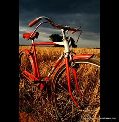 bicycle RED!
