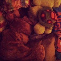 Faróca's Blogue - Me My Self And I:  Benjamim, OnDe EsTáS Tu?!??  Teddy Bear, Blog, Animals, Power Strip, Architects, Animales, Animaux, Teddybear, Blogging