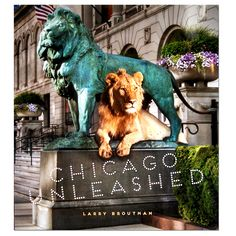 Chicago Unleashed - Hardcover Book