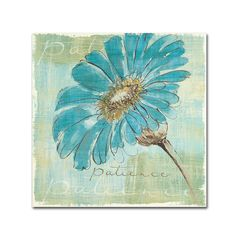 """Trademark Art """"Spa Daisies II"""" by Chris Paschke Painting Print on Wrapped Canvas & Reviews   Wayfair"""