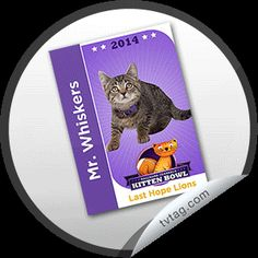 http://tvtag.com/stickers/hallmark_channel/kitten_bowl_2014