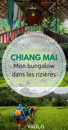 À deux heures de Chiang Mai, l'Ecolodge Spicy Villa se situe à l'extrémité d'un sentier escarpé au milieu des rizières. Il y règne une ambiance d'auberge de jeunesse, avec les bungalows à l'allure originale, les salles communes colorées et les différentes activités organisées en soirée. J'y ai passé le plus beau des séjour lors de mon voyage en Thaïlande #Thailand #voyage #chiangmai Bangkok Travel, Vietnam Travel, Thailand Travel, Asia Travel, Bangkok Trip, Chiang Mai, Phuket, Villa, Visit Thailand