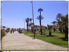 Paseos en bici por las playas de Castellón Valencia, Costa, Sidewalk, Orange Blossom, Beaches, Walks, Community, Pictures, Side Walkway