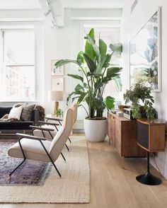 Beautiful Home interior Apartment Therapy - Home interior Design Living Room Benjamin Moore - Vintage Home interior Design Boho - Indian Home interior Bedrooms Headboards - - Home interior Design Videos Bedroom Inspiration Boho Living Room, Home And Living, Living Room Decor, Living Spaces, Modern Living, Living Room Plants, Dining Room, Small Living, Dining Area