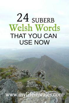 welsh, welsh language, welsh translation, learn welsh, welsh phrases, english to welsh, welsh to english, welsh words