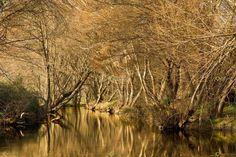 Ver y Conocer Extremadura - Foto - Rio Codosero (239389)