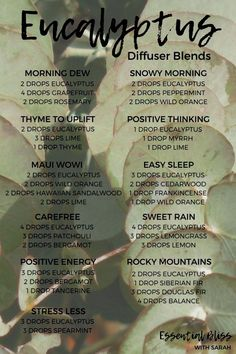 essential oil for anxiety inflammation best essential oils for anxiety doterra Essential Oil Spray, Essential Oils Guide, Essential Oil Diffuser Blends, Doterra Essential Oils, Doterra Diffuser, Lemongrass Essential Oil, Eucalyptus Essential Oil Uses, Oregano Essential Oil, Doterra Blends