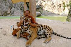 """""""O Grito do Bicho"""": Autoridades encontram 40 filhotes de tigres mortos...                                                                                                                                                     Mais"""