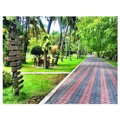 Sun Island Resort / Maldives