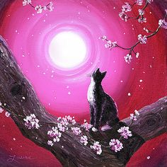 Laura Iverson - Tuxedo Cat in Cherry Blossoms