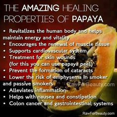 Papaya is a good source of vitamin C and folate. It is also good for stomach problems.