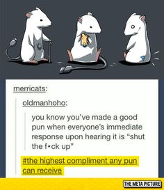 Pun Compliment - The Meta Picture
