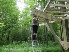 We are building a treehouse! With Daddy D still injured and having surgery soon, we are looking at our very first (and probably last!) summer with all four boyz and both parents home the entire