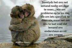 Inspiring wallpapers with inspiring thoughts Bubble Quotes, Afrikaanse Quotes, Missing You Quotes, Special Words, Funny Video Memes, Love Others, Beautiful Mind, Cool Pets, Animal Quotes