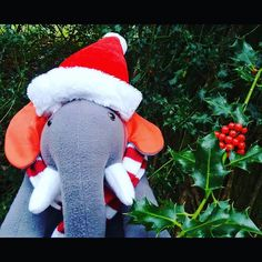 Being based on the scenic Southampton Science Park certainly has it's perks this Xmas! What's it like where you work? ❄ #xmas #holly #berries #business #elephant #southampton
