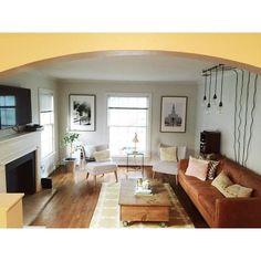 Martha Stewart says you can grow a lemon tree indoors + Costco had them for sale.  #decor