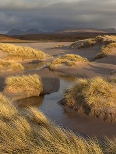 """"" Photograph of windswept Scotland wins the Big Picture photography competition – … """" Photograph of windswept Scotland wins the Big Picture photography competition – The Big Picture photography competition: round 478 – Travel – """" Landscape Photography Tips, Nature Photography, Photography Ideas, Beautiful World, Beautiful Places, Nature Aesthetic, Photography Competitions, Photos Voyages, Nature Photos"
