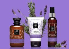 CARING LAVENDER The new natural & effective CARING LAVENDER line moisturizes the sensitive and dry, dehydrated skin, offering immediate relief from the feeling of burning and stinging sensation. It is rich in soothing, moisturizing and softening active ingredients, which are supported by clinical studies. Cosmetic Design, My Beauty, Beauty Secrets, Beauty Products, Living Essentials, Active Ingredient, Our Body, Sensitive Skin, Body Care