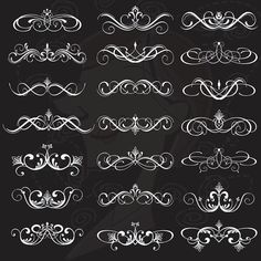 Digital Flourish Clipart Clip Art Swirls Vintage Wedding Scrapbook Supplies Decorative Classic Border Calligraphy White Flourishes 10303 on Etsy, $5.90