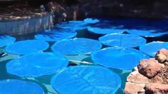 Homemade swimming pool solar rings from http://mikethepoolman.com