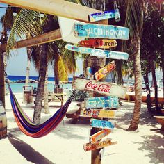 Mambo Beach - going there this October 2019 Bali, Willemstad, Puerto Morelos, Surf Shack, Caribbean Vacations, Tropical, Beach Bars, Beach Signs, Coastal Cottage