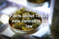Texas is prepping to license people to grow, sell marijuana. Here are 10 things you need to know 1/18/16