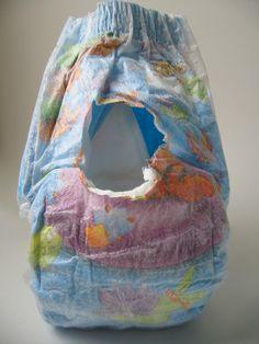B Ca D D A C Ea Ff on Stay On Dog Diaper Pattern