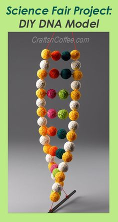 Pin this for later! How to make a double-helix DNA Model for a school project or science fair. CraftsnCoffee.com.