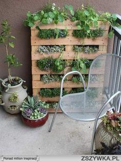 decorating ideas for balkony