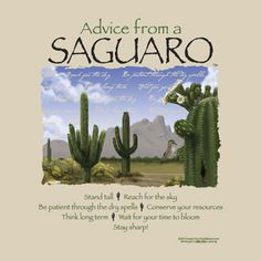 Advice from A Saguaro Cactus —Adult T-Shirts- Sedona Wonder Store Advice Quotes, Wisdom Quotes, Insightful Quotes, Inspirational Quotes, Earth Sun And Moon, Sun Moon, Party Makeup Looks, Animal Spirit Guides, True Nature