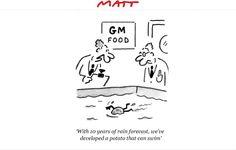 Matt cartoons witty political cartoons and satirical sketches - Telegraph