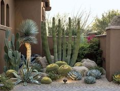 Cactus garden landscaping 50 fabulous side yard garden design ideas and remodel 42 beautiful front yard rock garden landscaping ideas Dessert Landscaping, Succulent Landscaping, Front Yard Landscaping, Succulents Garden, Landscaping Ideas, Mulch Landscaping, Arizona Landscaping, Pergola Ideas, Patio Ideas