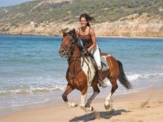 ride horseback on the beach. p e r f e c t
