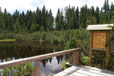 Jaká jsou nejkrásnější místa Šumavy? Tipy na výlety i s dětmi Garden Bridge, Outdoor Structures