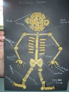 fun to tie into science or skeleton for Halloween