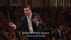 Possibly my favourite piece of music. Beethoven, Sinfonía Nº 6 ''Pastoral''. Wiener Philharmoniker, Christian ...