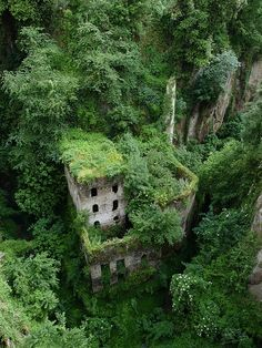 Abandoned building in Vallone dei Mulini near Sorrento, Italy (by liverweb).swallowed by the forest.