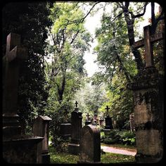 Right in the middle of Munich...an old grave yard...very mystic...especially when it is rainy. #soultravels #outdoorgirl #adventuregirl #mindful #munichandthemountains