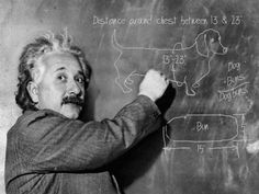 Einstein was a doxie fan :)