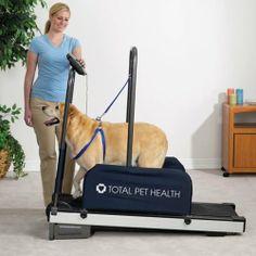 Big Sale  Total Pet Health Exercising Dog Treadmill