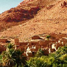 Oasis near Erfoud, Morocco
