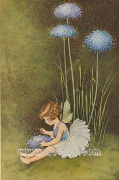 Ida Rentoul Outhwaite - A Bunch of Wild Flowers